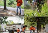 Locho Morán continúa rehabilitando espacios públicos de la ciudad de Colima.