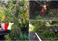 Tormenta del sábado dejó  daños en siete municipios