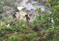 Cae a barranco tráiler que se dirigía a Manzanillo; hay una persona gravemente lesionada