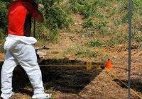 Confirma Fiscalía la recuperación de 11 cuerpos en 9 fosas en Madrid y Tecolapa