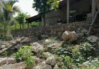 Alcalde Carlos Carrasco es seguimiento a petición de familias del Plan del Zapote