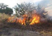 Se registra incendio en Montellano Villa de Álvarez