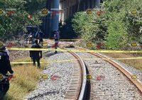 Tren arrolla y mata a hombre en Armería