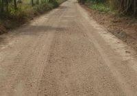 Rehabilita Salvador Bueno 4 kilómetros de caminos saca cosechas en Armería