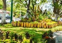 Diariamente se da mantenimiento a cerca de 200 jardines en el municipio de Colima