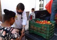 En Armería, regala nuevamente Chava Bueno 2 toneladas de jitomate para quienes menos tienen