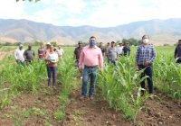 Inicia alcalde Carlos Carrasco programa de apoyo a productores de maíz en Ixtlahuacán