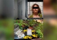 Asegura FGE inmueble, droga y detiene a una mujer