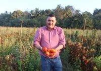 Carlos Carrasco entrega 7 toneladas de jitomate a familias de Ixtlahuacán