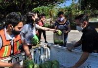 INJUV del municipio de Colima, un gran aliado de los sectores más vulnerables: Azucena López Legorreta
