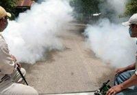 El 8 de marzo comienza primer ciclo de fumigación contra el dengue