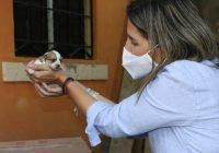 Margarita Moreno transformará centro de control canino en un espacio digno