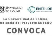 Invitan a participar en proyecto internacional  de la UdeC sobre estudiantes neurodiversos