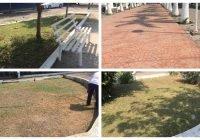 Permanente la supervisión de los 64 parques y 10 jardines del municipio de Tecomán