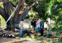 Trabajan en planteles de Manzanillo para retorno gradual seguro a clases