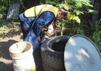 Se mantiene Colima en zona de  seguridad por incidencia de dengue