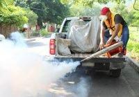 Realizan segundo ciclo de fumigación contra el dengue