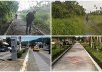 Ayuntamiento de Armería da mantenimiento a áreas verdes del municipio