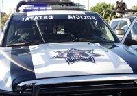 Tras reporte de C5i, Policía incautó más de 350 envoltorios con droga