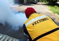 Colima está fuera de las entidades con más casos de dengue